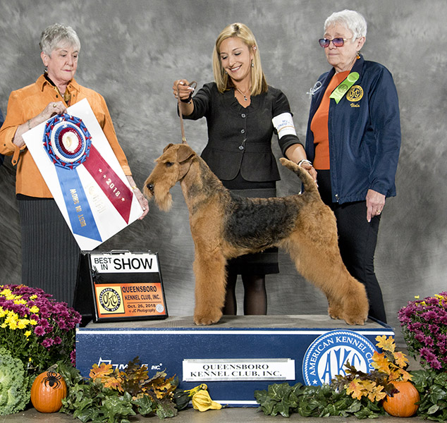 Alex Wins Best In Show